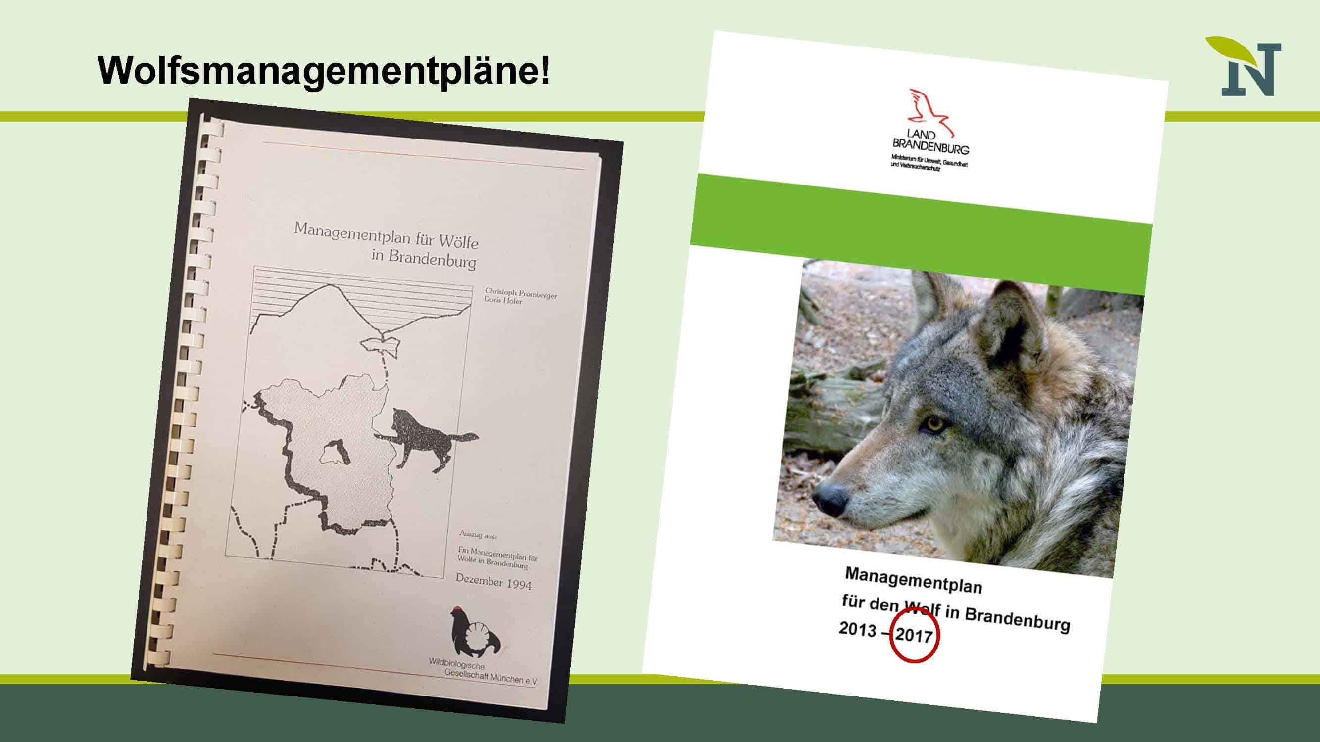 Wölfe In Brandenburg Karte.Alte Wölfe Und Neue Märchen Forum Natur Brandenburg