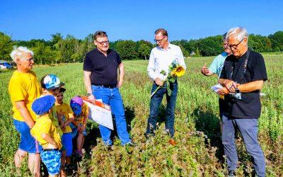 Blühflächen im Land Brandenburg wachsen und wachsen!