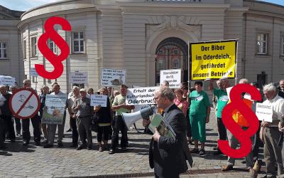 Dokument des Misstrauens gegenüber ländlichem Raum – Minister Vogels neue Biberverordnung