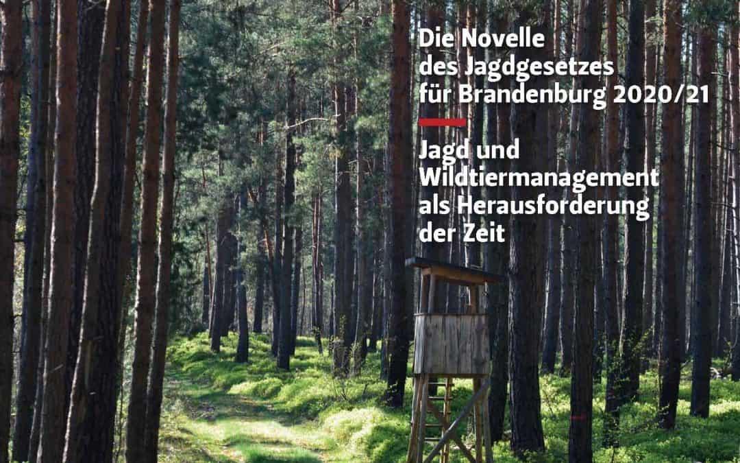 Jagdgesetz: Vorschläge für Jagd und Wildtiermanagement